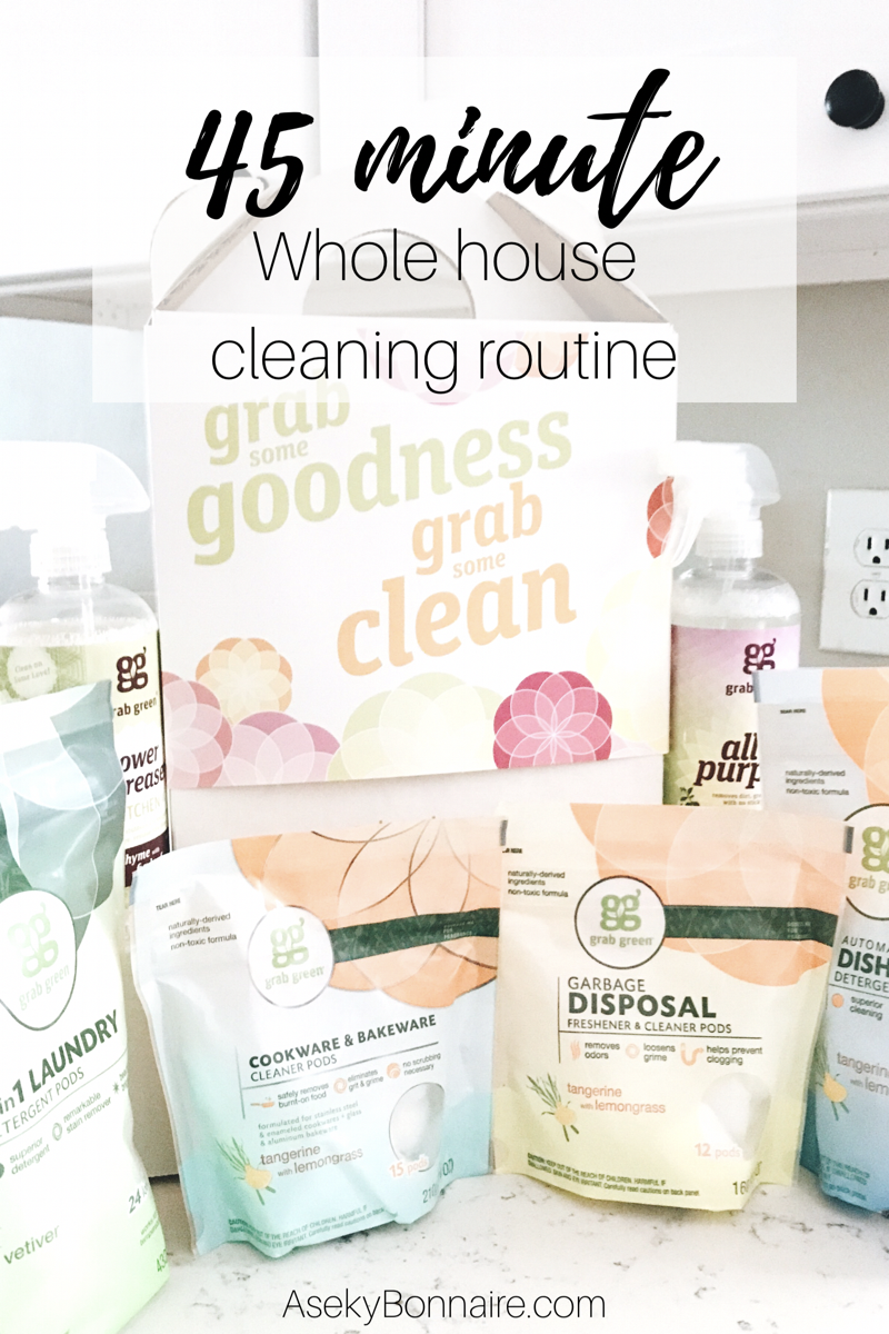 Daily 45 minute cleaning routine