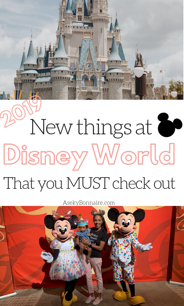Whats New At Walt Disney World: 2019 - Aseky + Co